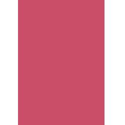 Pixeet Icon