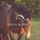 Cheval & Sens