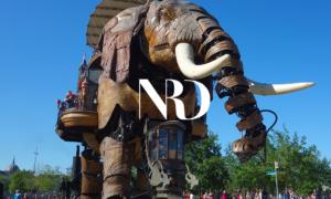 Nantes Réseau Développement